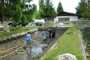 Teichreinigung forellenzucht kr iligen for Teich reinigen